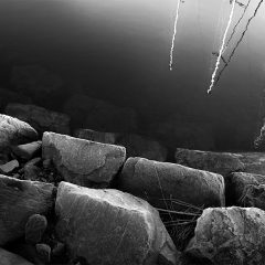 Seilbåt i havna